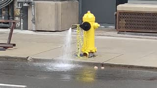 Lonely fire hydrant