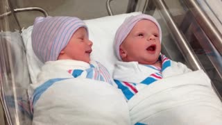 Newborn Twins Have Their First Conversation In The Hospital Baby Cot - Video