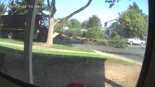 UPS Truck Takes Out Tree Branch