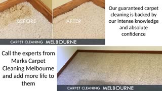 Marks Carpet Cleaning Melbourne - Video