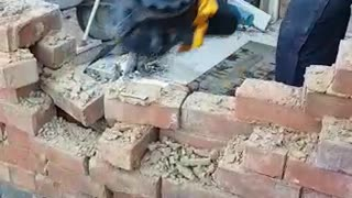 Worker Comically Demonstrates Demolition on Site