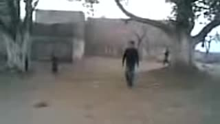 in village cricket playing under trees  - Video