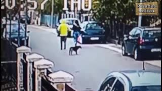 Street dog hero saves innocent woman from burglar