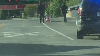 Police Pull Over Little Girl
