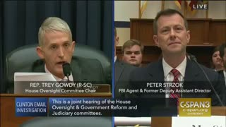 Trey Gowdy obliterated FBI Agent Peter Strzok in 9 seconds - Video