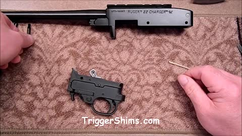 Ruger 1022 Trigger Tear Down Video Part I