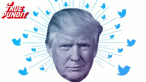 Trump Wins Defamation Court Case Over His Twitter Account