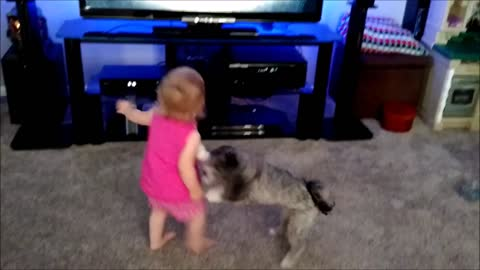 Toddler and puppy play Kinect