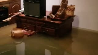 Flooded Streets Spill into Basement