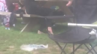 Sunglasses guy passed out at barbecue picnic table - Video