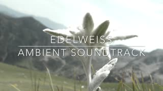 Edelweiss: An Ambient Soundtrack