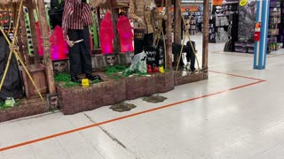 Service Dog: Public Access at Halloween Store with Wato!