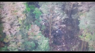 No survivors in Papua plane crash: Indonesia - Video