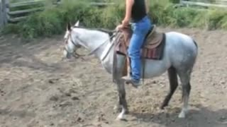 Sweet Little Horse Can Outbuck Any Rodeo Bronc – Woman Rides It Like A PRO - Video