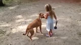 Little Girl Is Pitbull Dogs Boss 88 {BE FREE} - Video