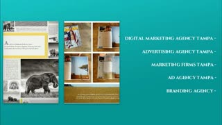 digital marketing agency tampa - Video