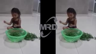 How to pick vegetables - baby pick vegetables - Video