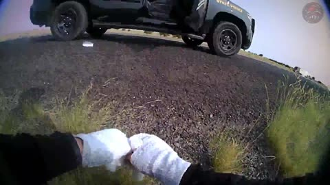 New Mexico Trooper Shot On Traffic Stop, Chases Suspect Who Shot Her