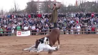 What This Man Does To His Horse Will Blow Your Mind! - Video