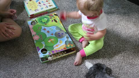 Toddler Plays with Pull-and-Go Ladybug Book
