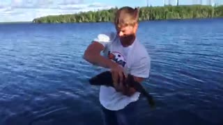 Walleye Hand Fishing - Video