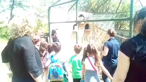 a teacher and children in the zoo see an eagle