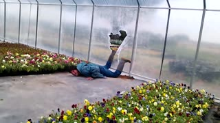 Man Dives Into Greenhouse Through Plastic Sheeting - Video