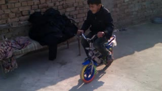 Boy driving his younger brother,s bicycle  - Video