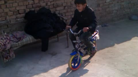 Boy driving his younger brother,s bicycle
