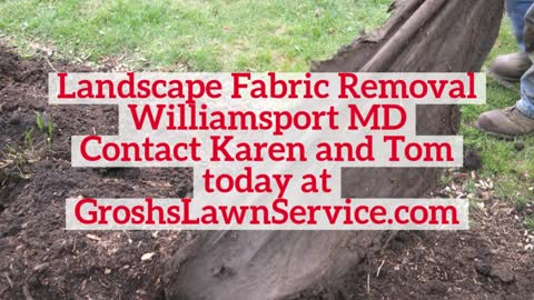 Landscape Fabric Removal Williamsport MD Contractor GroshsLawnService.com