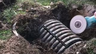 Kind Kids Rescue Lamb From An Underground Pipe - Video