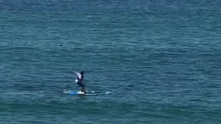 Guy tries to stand on a surfboard and he falls off  - Video