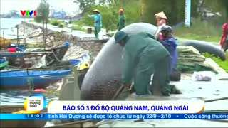 Tropical storm Vamco lashes Vietnam - Video