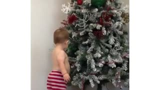 Funny Kid first saw the tree
