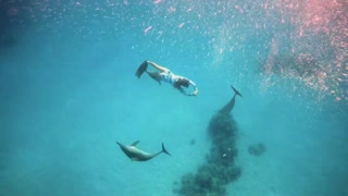 Swimming with DOLPHINS in Egypt -