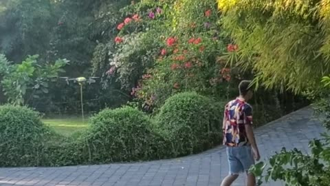 Taking the Drone for a Walk