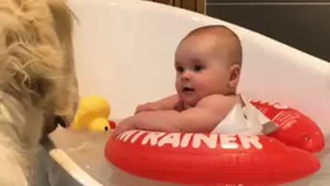 Protective doggy acts as lifeguard during baby's bath time