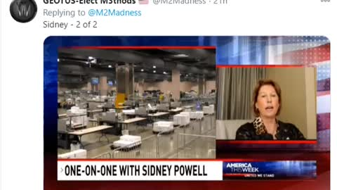 One-On-One With Sidney Powell_Prt 2