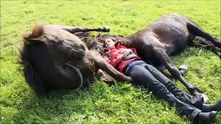 A Woman Lies Lounging in a Field With a Couple of Large Horses Who Silently Bond With Her - Video