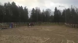 This Horse Did NOT Want To Be Ridden – Could You Have Stayed On? - Video