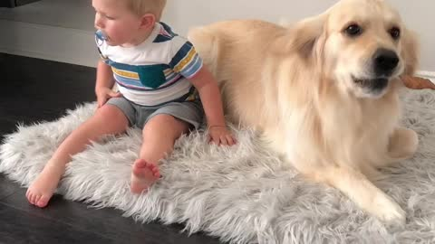 Adorable Pup Is Willing To Share His Bed But Not His Treat
