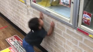 Excited Doggy Dances With Boy Through Window