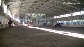 Girl in grey shirt falls off horse