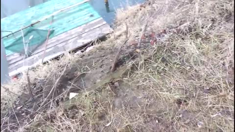 Grenades Fishing By Russian Servicemen In Donetsk Oblast Of Ukraine, Feb 5 2015