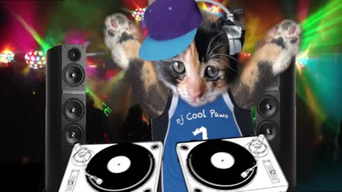 DJ Cool PAWS