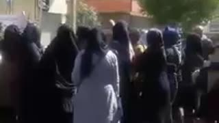 Protest gathering of teachers and educators in Shiraz - Video
