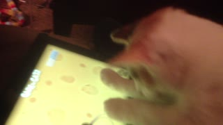Group of cats play on tablet - Video