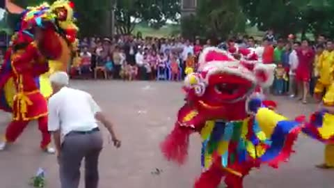 The most beautiful lion dance