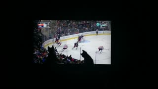 Kittens enjoy watching hockey