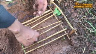 Amazing Quick Rabbit Trap in Cambodia - How To Make Rabbit Trap Easy - Best Rabbit Trap Homemade  - Video
